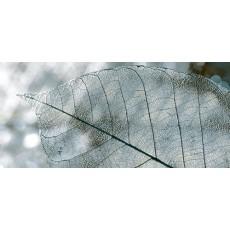 Декор Magia серый  23*50 см Д61071