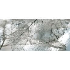 Декор Magia серый  23*50 см Д61071-1