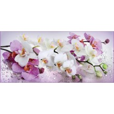Декоративное панно Орхидея 294х134 (6 листов)