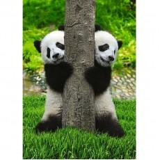 Фотообои DECOCODE Две панды 21-0167-NG (200х280 см)