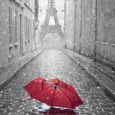 Декоративное панно VIP Парижский дождь 196х260 (8л)