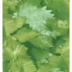 Пленка самоклеящаяся COLOR DECOR 0,45х8м Зеленые листья 8592