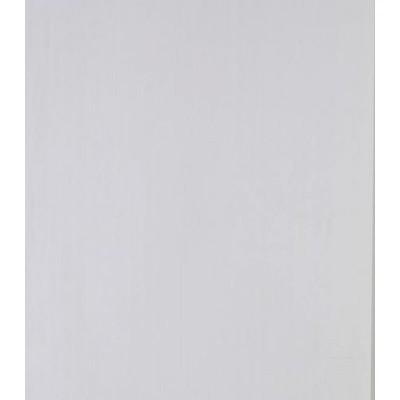 Панель ПВХ Белая (матовая) 3000х250х9 мм
