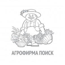 Кресс-салат Забава(А) (ЧБ) (увеличенный размер) 1 г